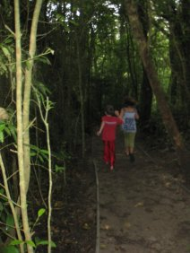 My little sister and friend walking on the cloud forest path.